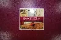 Barsellona -  продажа итальянской негорючей ткани (жаккард негорючий)